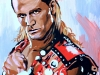 The Heartbreak Kid Shawn Michaels