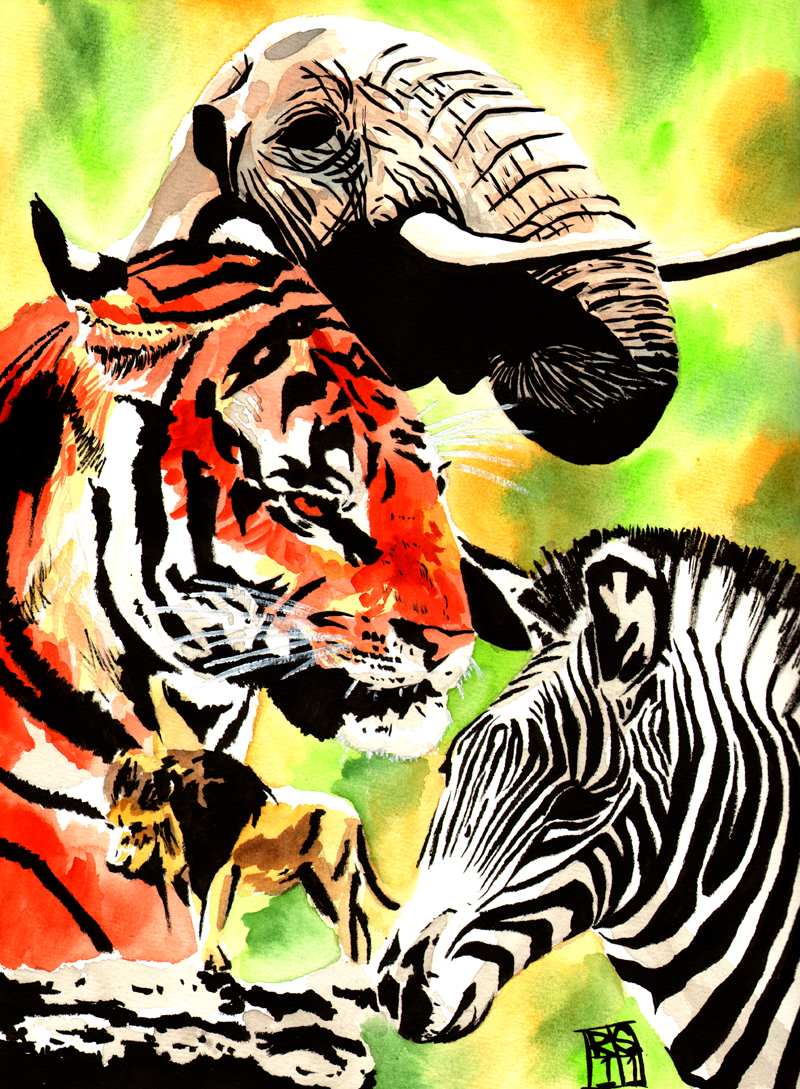 Pin Tiger Vs Lion Wins The Fight on Pinterest